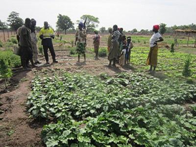 Développement local